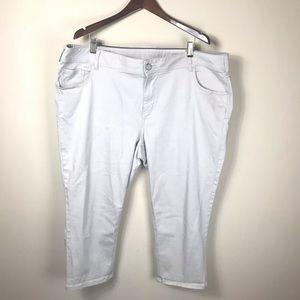 Lane Bryant Khaki Capris Size 24